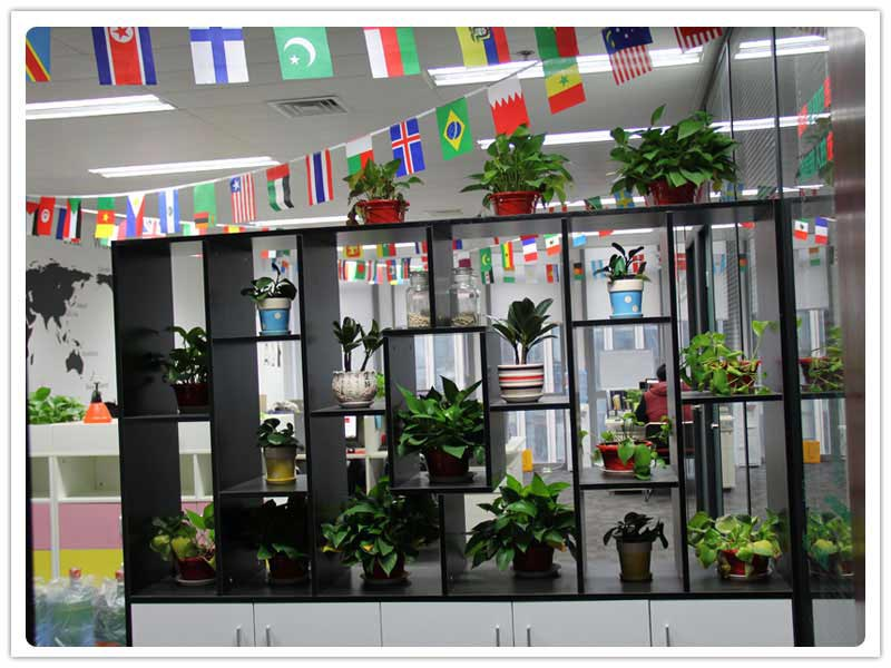 Green Plants In Maketing Dept