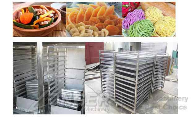 Noodles Drying Machine|Drying Oven For Fruit and Vegetable