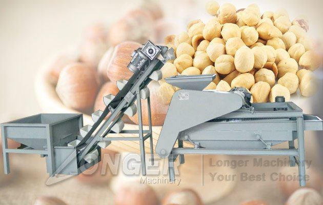 Industrial Hazelnut Shelling Machine|Stainless Steel Hazelnut Cracking Line