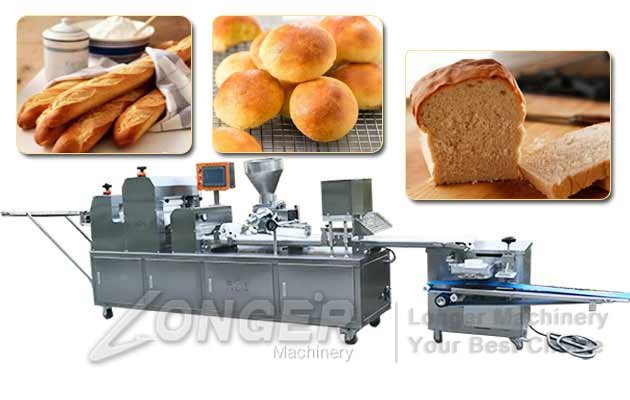 Automatic Bread Production Line|Bread