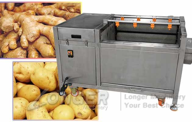 Brush Fruit And Vegetables Washing Peeling Machine On Sale