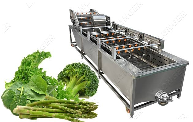 Air Bubble Vegetable Washing Machine|Commercial Leaf Vegetables Cleaning Equipment