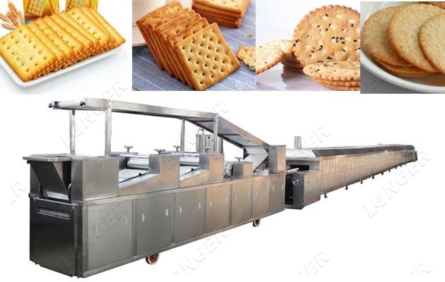 Multifunctional Biscuit Processing Plant Manufacturer