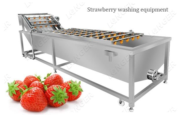 Durable Fruit Strawberry Washing Equipment Supplier