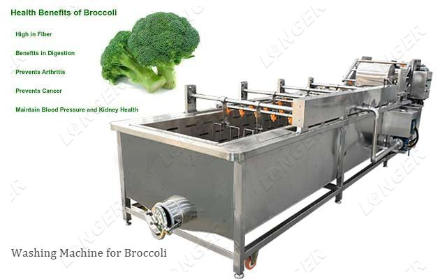 SUS304 Broccoli Cauliflower Cleaning Washing Line