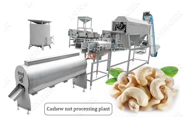 2021 Automatic Cashew Nut Shelling Processing Plant