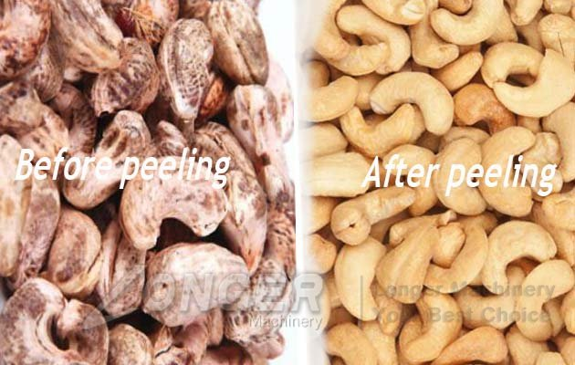 cashew nut peel machine price