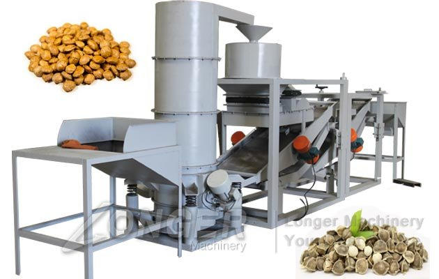 moringa seeds shelling machine