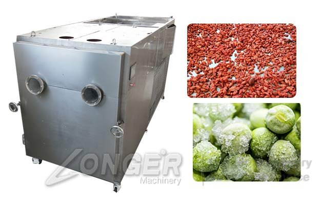 freeze drying machine cost