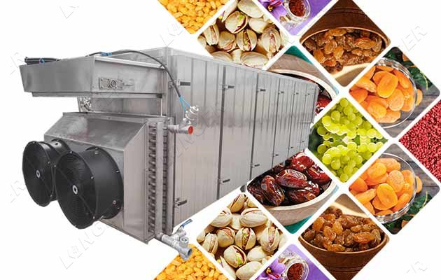 fruit drying machine for sale