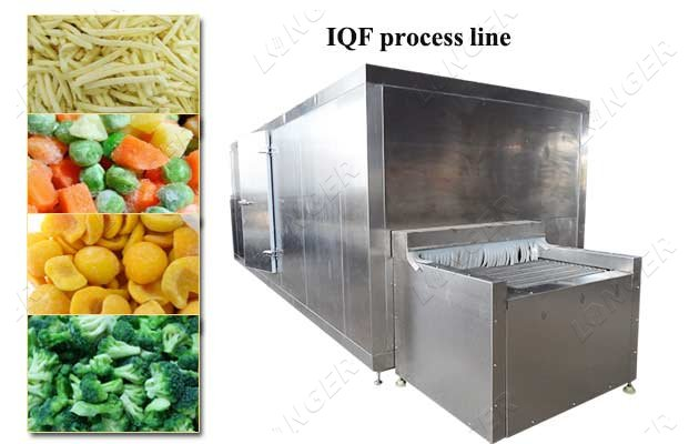 IQF processing plant