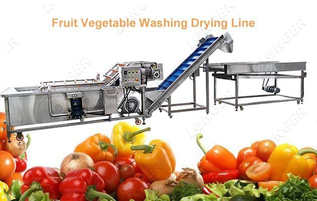 leafy vegetable cleaning equipment